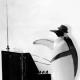 Fritz-Ferdinand von Pinguin